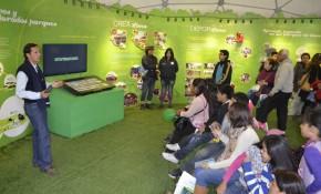 Feria Web 3