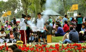 Familias en parques zonales