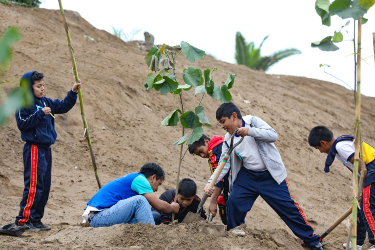 Día Mundial del Ambiente: escolares sembraron árboles en Bosque Educativo Municipal del Sur