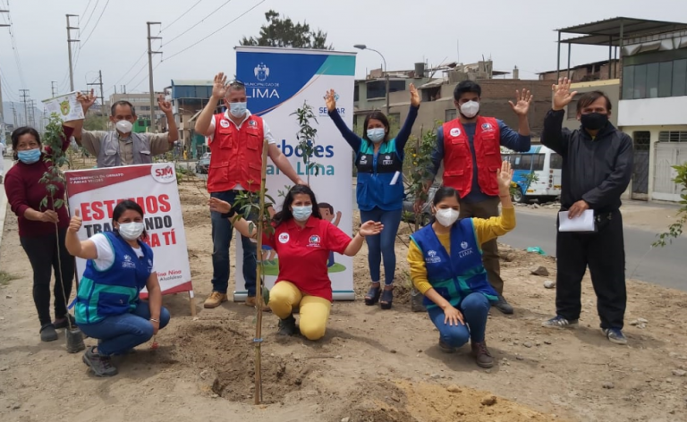 Árboles para Lima: Serpar plantó 600 árboles en San Juan de Miraflores