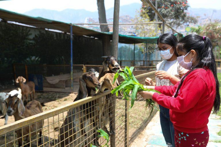 Familias podrán volver a los clubes zonales con protocolos de bioseguridad