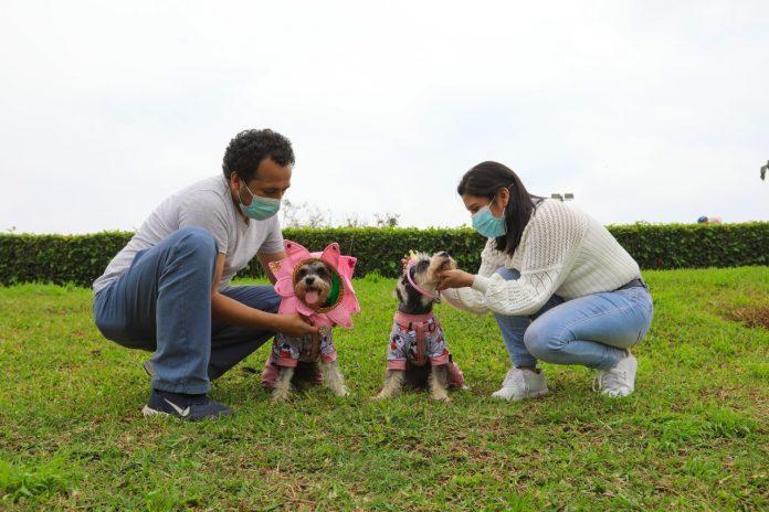 Concurso canino Patitas en primavera