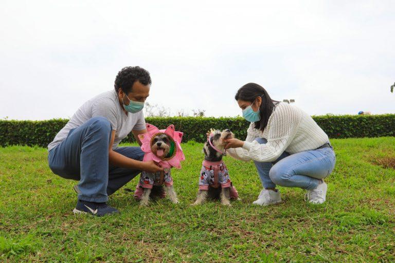 Festival canino: Coronarán a la reina y el rey de la primavera en club zonal Sinchi Roca